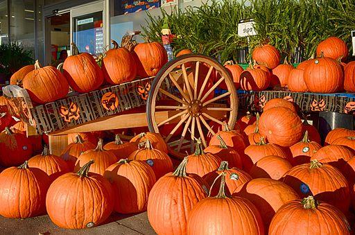 Pumpkins-202133