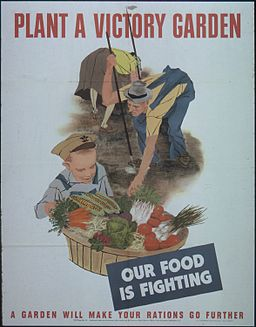 PLANT A VICTORY GARDEN. OUR FOOD IS FIGHTING - NARA - 513818