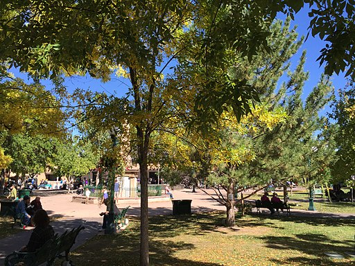 Trees provide shade at the plaza