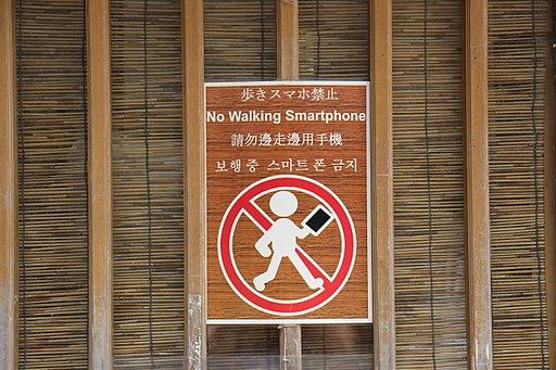 歩きスマホ禁止 (32217936054)