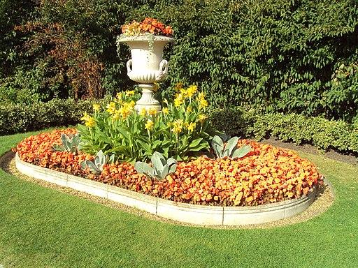 Flowers, Regent's Park, London - DSC07043