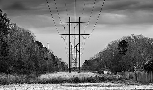 Power lines during Blue Hour BW