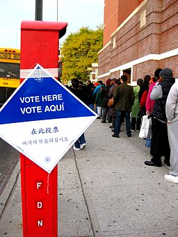 2008 voting line in Brooklyn
